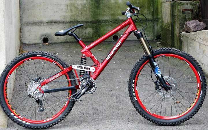 f22 bike zumbi